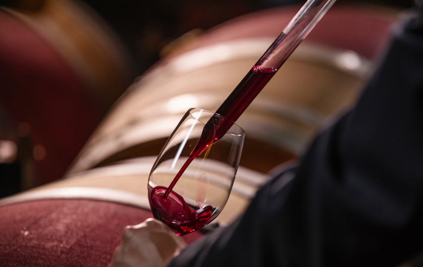 Familia Torres Winery